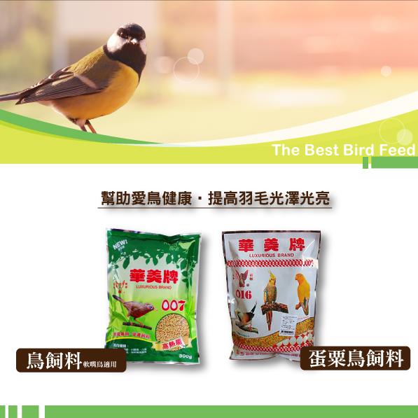 幫助愛鳥健康,提高羽毛光澤光亮│全球寵物鳥用品製造專家