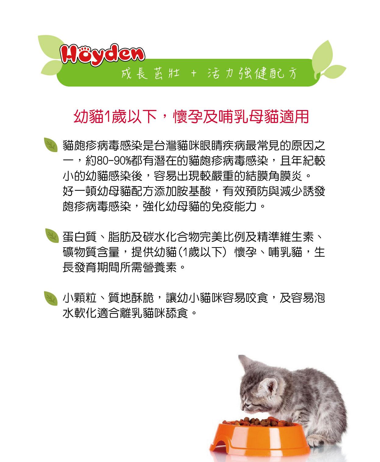 幼貓、懷孕母貓及哺乳母貓適用│全球寵物-好一頓貓乾糧