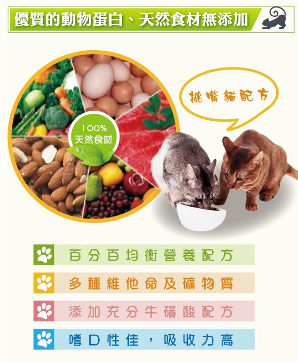 專為挑嘴成貓設計,百分百營養均衡│全球寵物-戀戀貓乾糧