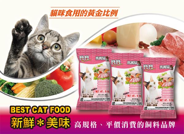 貓咪食用的黃金比利│全球寵物-戀戀貓乾糧