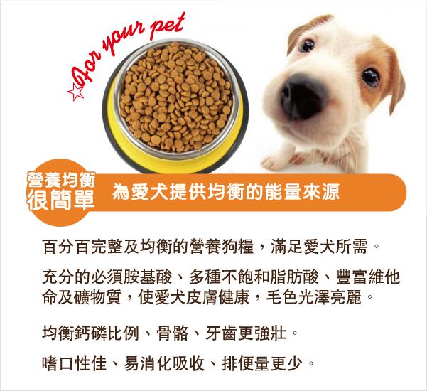 每款配方皆由寵物營養師嚴審,為愛犬提供均衡的能量來源│全球寵物-好一頓乾狗糧