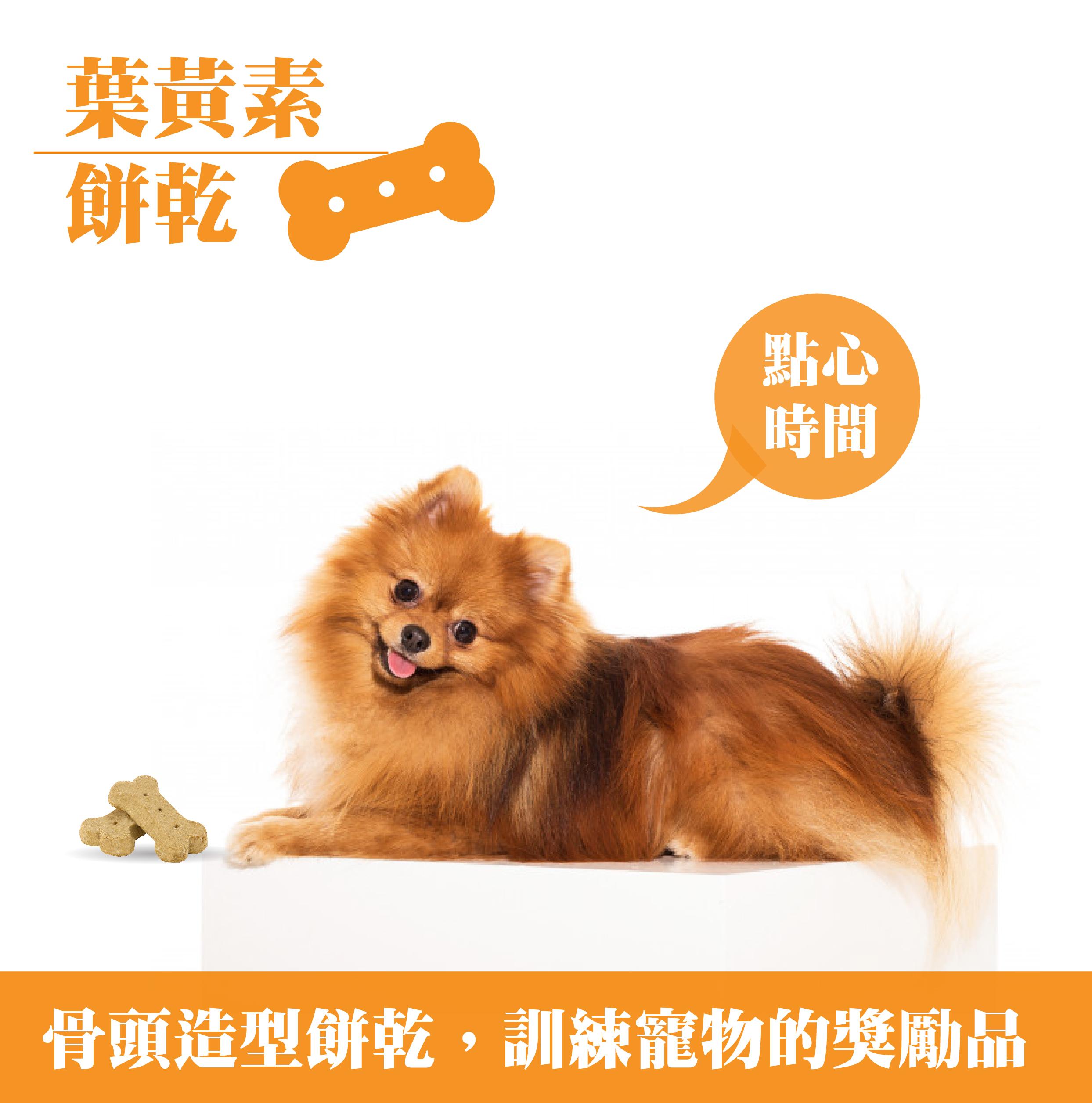 三色骨型餅乾,維持愛犬營養均衡丨戀戀寵物餅乾零食-全球寵物