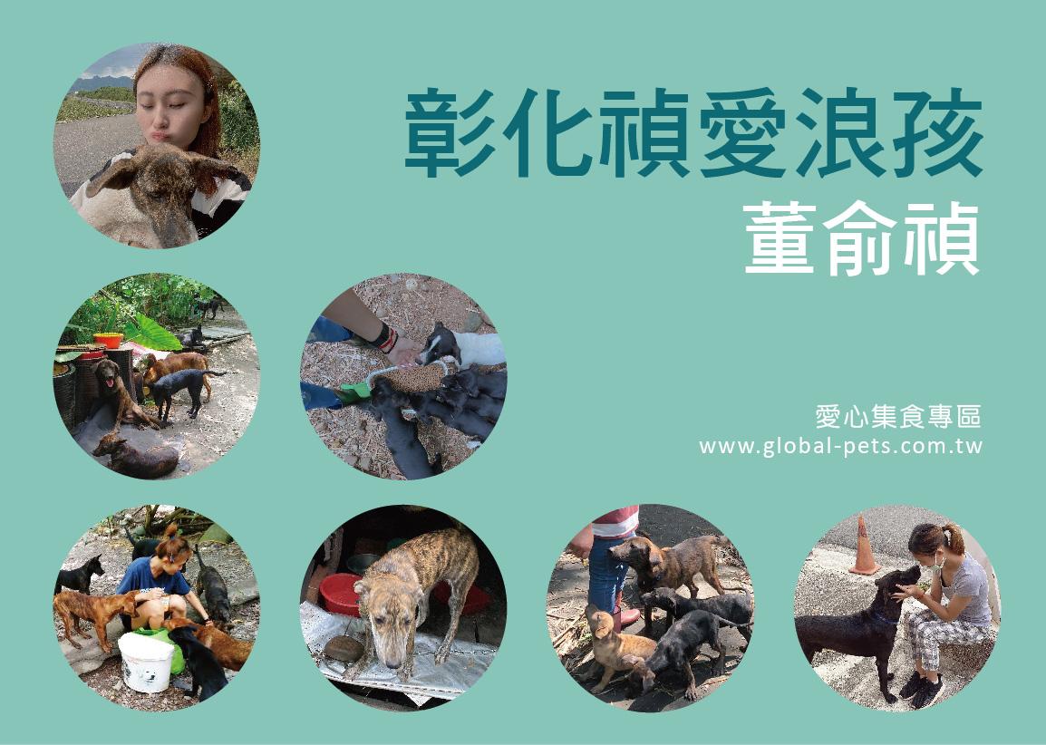 狗狗助糧平台,每個月將每一位捐贈者的愛心送達彰化禎愛浪孩-董俞禎愛媽 每月募集飼料進度查詢